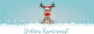 facecover rudolphh